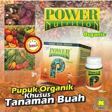 POWER NUTRITION ( PUPUK KHUSUS BUAH )